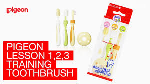 <b>Pigeon Training Toothbrush</b> Set - YouTube