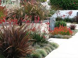 front yard garden ideas pictures. collect this idea outdoor-color-grasses front yard garden ideas pictures a