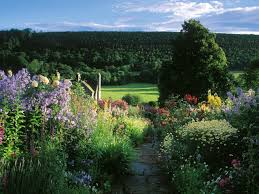 Heatheru0027s Romantic Cottage Garden U2013 3  Jerry ColebyWilliamsRomantic Cottage Gardens