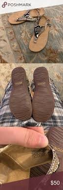 Kirra Size Chart New Vionic Kirra Orthaheel Sandals Snake Size 9 New Weithout