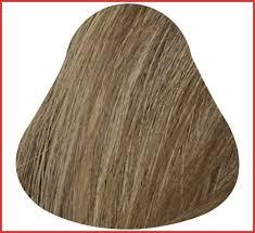 Cinnamon Hair Color Chart 75 Abiding Hair Color Ideas Chart