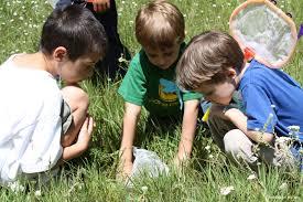 """بازی در طبیعت"""" با کودکان"""