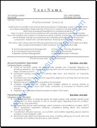 professional resume format sample professional cv template a professional resume sample resume sample it professional resume anylist