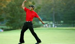 Image result for picture of tiger last stroke