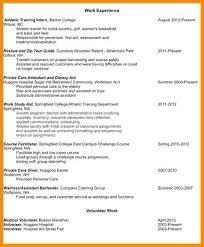 Resume With Volunteer Work Unitedijawstates Com