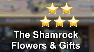 Small Picture The Shamrock Flowers Gifts Eugene Incredible Five Star Review by
