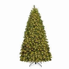 Best Warm White Led Christmas Tree Lights