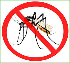 Image result for mosquito clipart