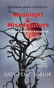 Kevin's Corner: Review: Moonlight & Misadventure: 20 Stories of ...