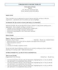 Online Job Resume Job Resume Creator First Job Resume Builder First Job Resume Builder