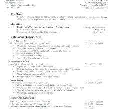 Simple Job Resume Examples Basic Job Resume Examples Good Job Resume