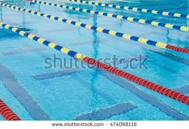 olympic swimming pool lanes. Lanes In A Competition Olympic Size Swimming Pool C