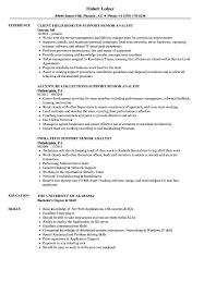Web Analyst Resume Sample Support Senior Analyst Resume Samples Velvet Jobs 18