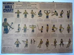 Bullworker Classic Exercise Chart Bullworker Wall Chart Pdf Revamesafes