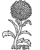 Patricks day and easter, we have those too. Flowers Coloring Pages Sheets Topcoloringpages Net