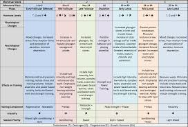 Menstrual Cycle Phases Chart Pin By Michele Brandi On Body Care Menstrual Cycle Phases