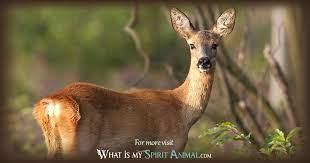 deer symbolism meaning spirit