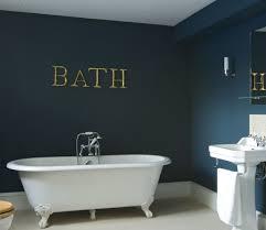 image result for dark teal bathroom