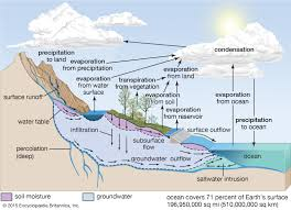 Flow Chart On Water Cycle Water Cycle Definition Steps Diagram Facts Britannica
