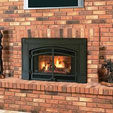 image of contemporary gas fireplace inserts