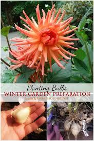 fall garden guide planting bulbsgarden