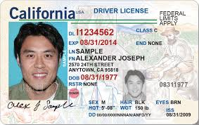 id Slideshow Driver Know You ' Need 'real California To 's About What BUnBqw8f