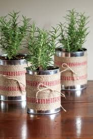 DIY Holiday Gift Plant Projects  The Garden GloveChristmas Gift Plants
