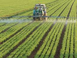 Image result for nigeria farmers group