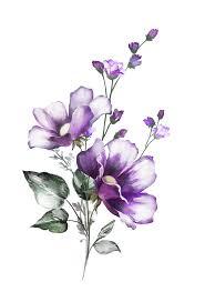 16png в 2019 г цветы акварель татуировка цветы и идеи для