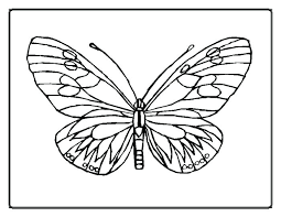 Small Picture Hungry Caterpillar Coloring Pages Pdf Big Monarch Butterfly Page