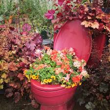 Image result for award winning toilet planter