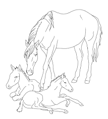 Colouring Pictures Of Horses And Foals