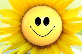 Hitze Smiley Sommer Sonne Smiley Smileygarden