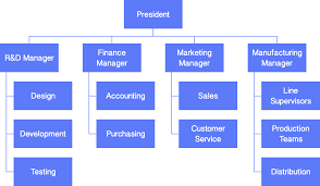 example of org develop your organizational charts cacoo