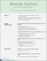 Resume Examples For Finance Manager Inspirational 26 Finance Resume