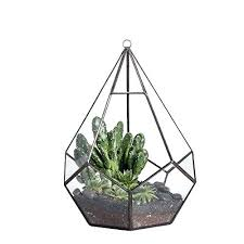 hanging glass plant pots crystal clear rack uk