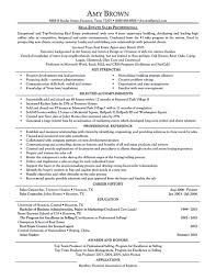 Realate Agent Resume Resumes Job Cover Letter First Time Sample