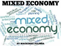 mixed economy by mackenzie dulimba slide notes