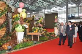 guests view works in the 2011 taiwan international orchid show which will run until march