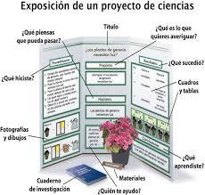 Proyecto De Ciencias Un Proyecto Escolar Proyectos De Ciencia Proyectos De