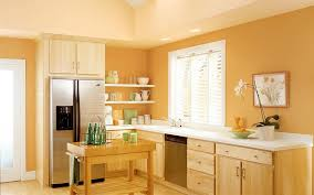 Kitchen Paint Color Ideas Best Decorating