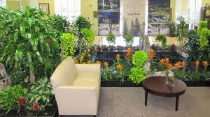 ideas tropical indoor plants home design and decor beautiful basement design ideas home office bathroomgorgeous inspirational home office