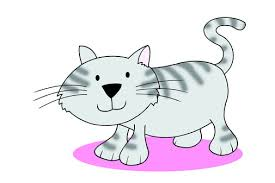 <b>Kitten</b> in the kitchen | LearnEnglish Kids | British Council