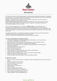 Sample Resume For Sales Assistant With No Experience Beautiful Top
