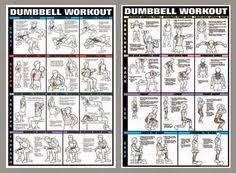 biceps and triceps workout at home with dumbbells health fzl99 arm workout no equipment