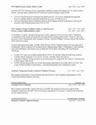 It Consulting Contract Template Elegant 20 Elegant Non Disclosure ...