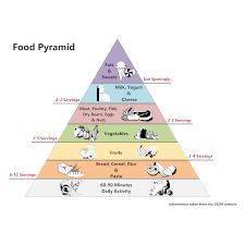 What Is Food Pyramid Chart Food Pyramid