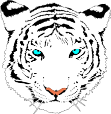 Small Picture tiger coloring pages printable coloring adult coloring pages
