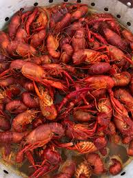 Cray Cray Seafood - Home - Kenner ...