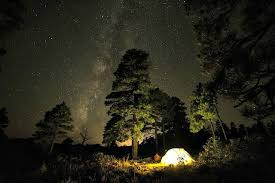 Camping in the woods at night Fire Camp Deep In The Woods Arborexplorer Awesome Halloween Camping Ideas You Need To Know About Arborexplorer